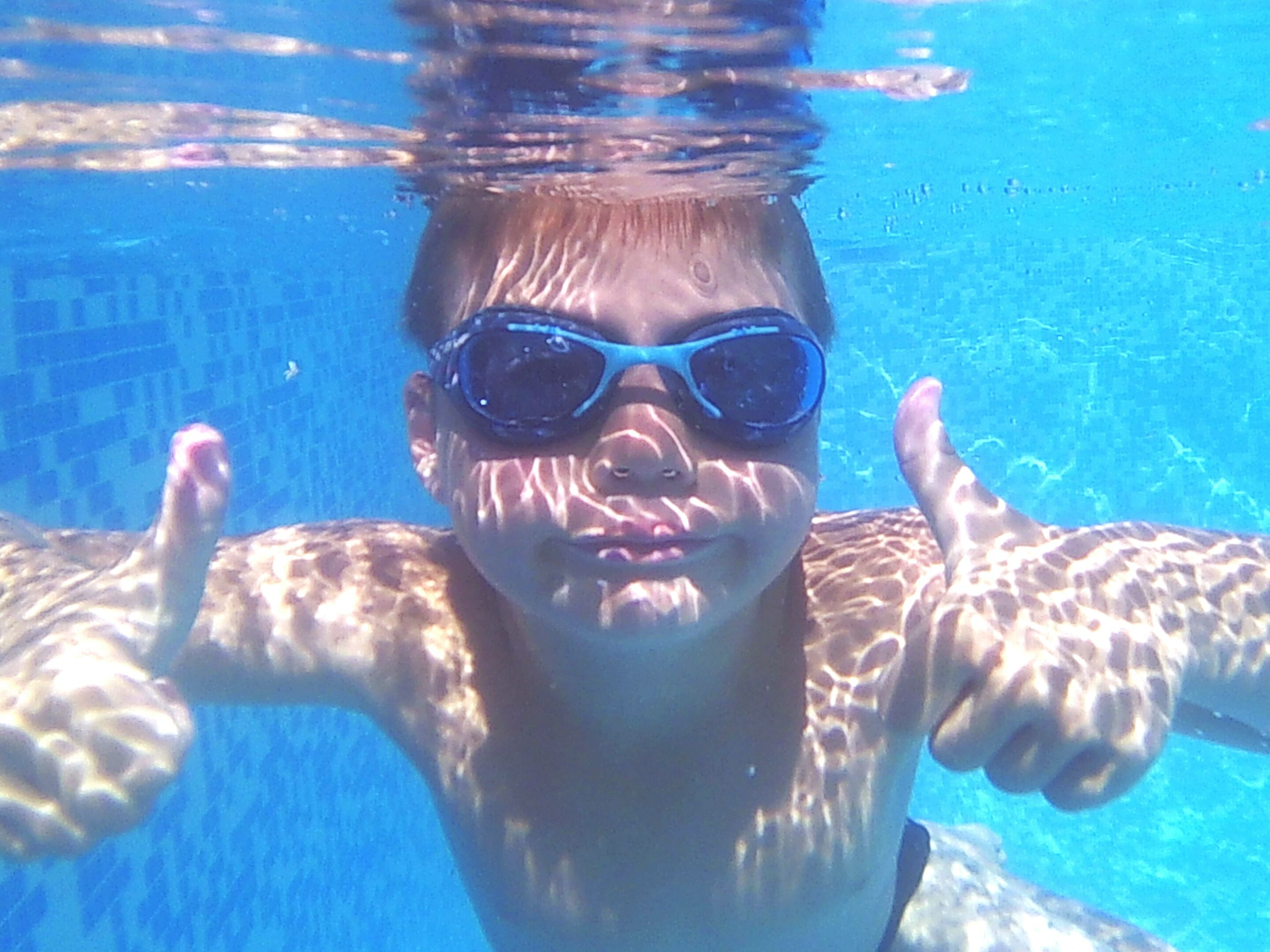 water, animal themes, swimming, blue, swimming pool, underwater, portrait, looking at camera, sea, animals in the wild, sunlight, leisure activity, person, wildlife, undersea, fish, front view, togetherness