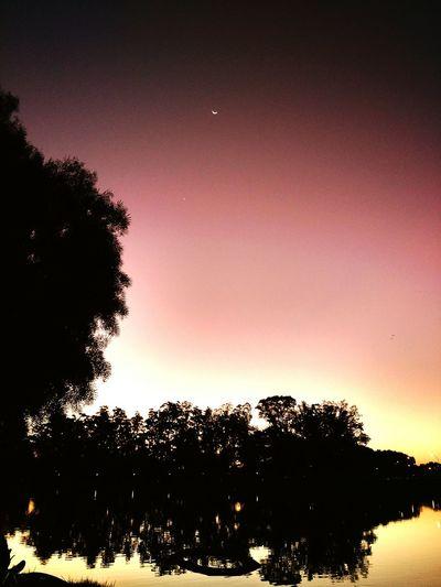 Parque do Ibirapuera - São Paulo Sunset Park Peace And Quiet Beautiful Day Taking Photos Saopaulo Brasil