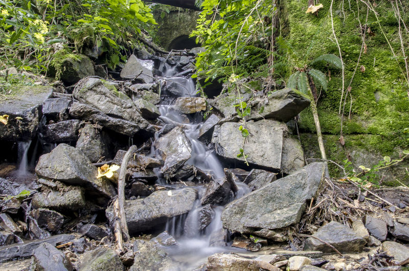 Beskidżywiecki Day Flowing Water Forest Long Exposure Motion Outdoors Plant Power In Nature Rock - Object Scenics Stone - Object Stream Tourism Water Waterfall