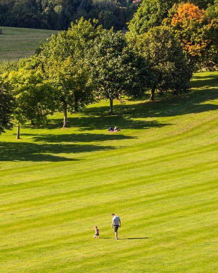 Soaking Up The Sun Scotland Eye Em Scotland Eyeem Scotland  I Love Scotland Chatelherault Country Park