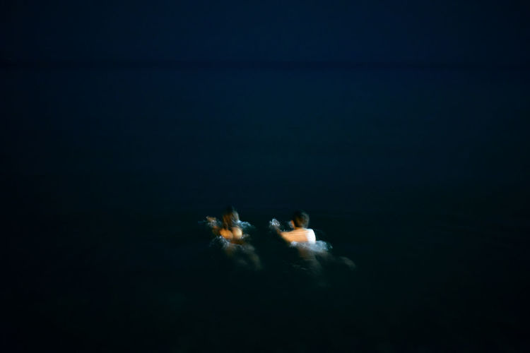 Swimming together in the black sea