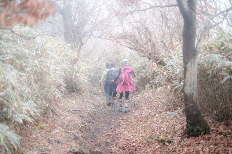 Japan Nature EyeEm People Of EyeEm Peoplephotography Landscape People EyeEm Nature Lover Fog