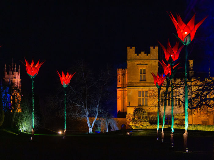 Illuminated Architecture Glowing Outdoors Night Plant Tulips Spectacle Of Light Sudeley Castle Alice In Wonderland