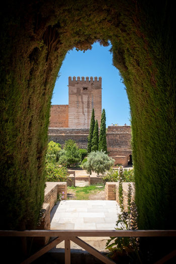 Alhambra De Granada  Granada, Spain The Week on EyeEm Alhambra Ancient Ancient Civilization Architecture Building Building Exterior Built Structure Day Grass History Nature No People Old Outdoors Plant Sky The Past Tourism Travel Travel Destinations Tree Wall