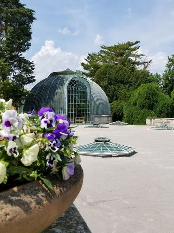 The Glasshouse at the UNESCO World Heritage site of Lednice Castle. Czech It Out Dome Round Shape Roof Arch Archway Door Doorway Sky Lights Garden Botanical Garden Horticulture UNESCO World Heritage Site Blue Sky Shapes And Forms Tourist Attraction  Lednice Europe Czech Republic Flowers Pansies Planter Trees Plants Glass Architecture Glasshouse Greenhouse Sky Architecture Cloud - Sky The Traveler - 2018 EyeEm Awards