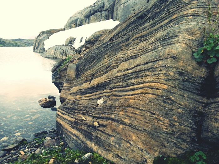 Rock in Lakhu National Park Lakhu National Park  Eye4photography  EyeEm Nature Lover