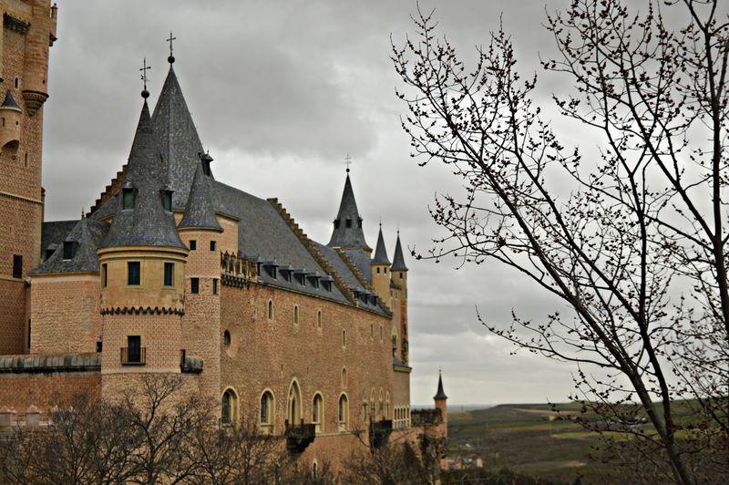 Castle on the hill Alcázar Of Segovia Castilla Y León Castle Fairytale  Nature Tree Alcazar De Segovia Alcázar Segovia Architecture Built Structure Castillo Old Sky Tower