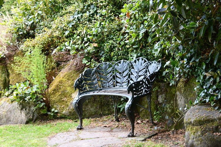 love seat Bench Benches Tree Bird