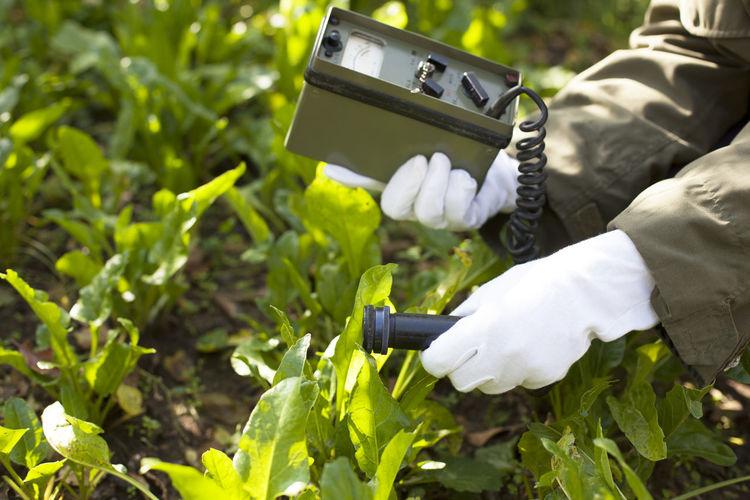 Scientist using equipment over plants at farm