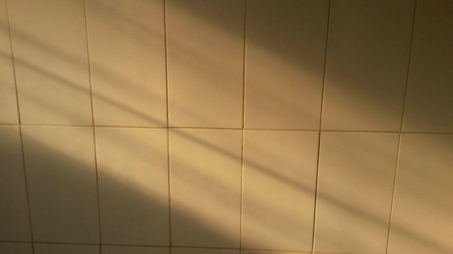 Pivotal Ideas Luz Do Sol Reflexo Do Sol Sol Da Tarde