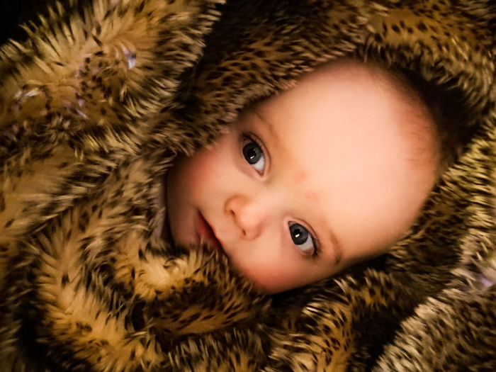 Furry baby 3 Baby In Fur Baby Cute Baby Portrait Looking At Camera Fur Child Childhood Close-up Human Face Cute One Person Eye Headshot