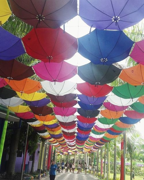 You can stand under my *colorful umbrella(s) 🌂