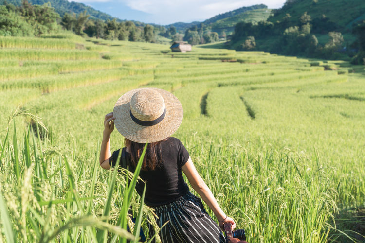 Asian  ASIA Argriculture Travel Woman Happiness Hat Field Agriculture One Person Rural Scene Landscape Land Clothing Farm Plant Adult Crop  Nature Women Growth Environment Beauty In Nature Day Scenics - Nature Rear View Farmer Outdoors Sun Hat