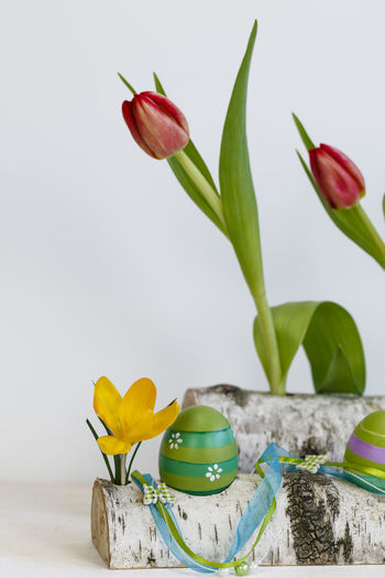 Creativity Decoration Easter Easter Eggs Flower Flower Head Fragility Freshness Hobbies No People Petal Tulips Vase Yellow