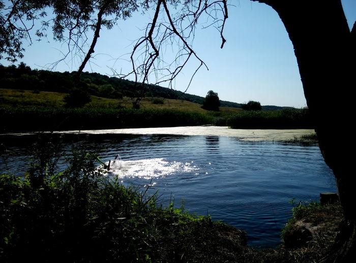 River Seversky_Donets Severskiy Donets, Kharkov Region,ukraine Balakleya River Summer ☀ Tranquil Scene Reflection Water Freshness Freedoom  Clear Water Pure Water Amazing Water