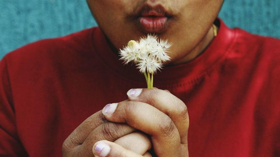 Midsection of teenage girl blowing dandelion seed