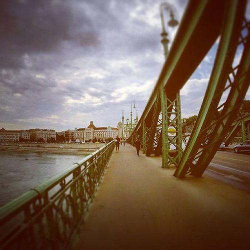 Danubio Budapest Ungheria Bridge Landscape Travel Travelphotography Trip Journey Gopro