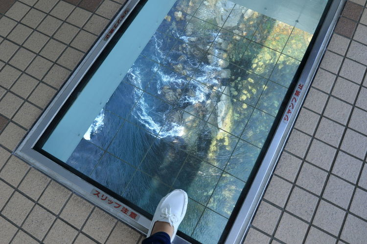 http://www.topia.ne.jp/english/tourism/sightseeing/eastern_tokushima/e-01.html 橋から海が見える~♪ Architecture Bridge Building Exterior Day Human Body Part Human Leg Lifestyles Low Section Nature One Person Outdoors Personal Perspective Real People Reflection Sea Water 鳴門 Flying High EyeEmNewHere