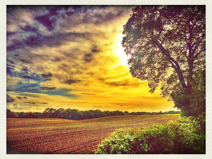 Eveningtime.. Sun Sky Skyporn Landscape