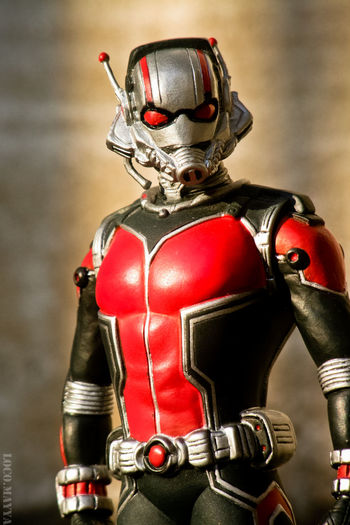 Antman Marvel Superheroes MarvelHeroes Marvelfigures Mycollection Rookie Photographer Rookie Photo Figurephotography EyeEm Gallery