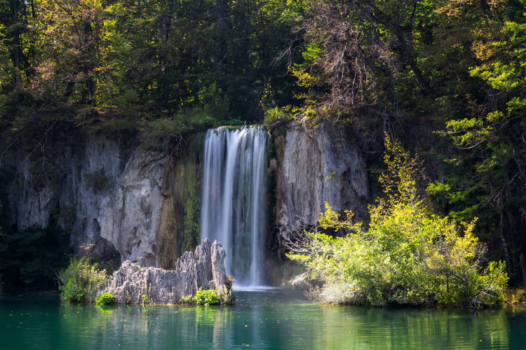 Water Waterfall Tree Plant Scenics - Nature Beauty In Nature Forest Nature Motion Long Exposure Land Rock Flowing Water No People Day Rock - Object Tranquil Scene Travel Destinations Outdoors Power In Nature Flowing Plitvice National Park Plitvice Lakes National Park Zen Croatia