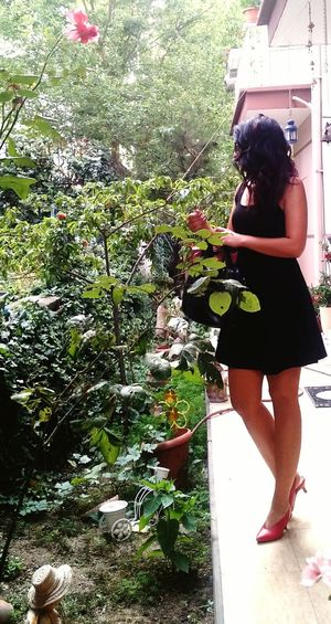Full Length Tree Standing Spraying Young Women Women Front Or Back Yard