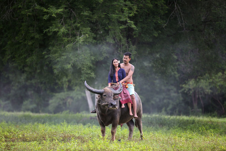 People riding horse on land