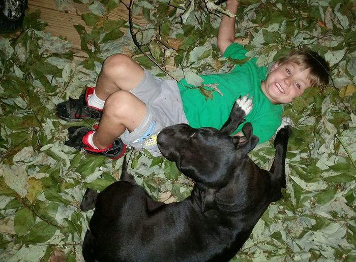 Best Friends ❤ Missouri Ozarks, USA 💥💖 Family 🙏🙌 💯 Country Life Fun💕 👫 Grandkids 💙💛💜 Boys Summer Time  Playing Child Portrait Smiling Childhood Low Section Pets Looking At Camera Happiness Friendship Pit Bull Terrier Canine Preschooler