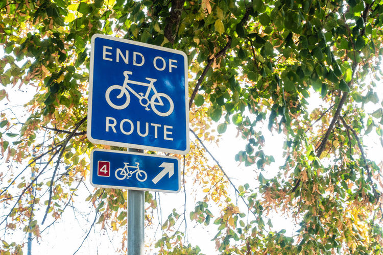 A road sign indicating the end of a cycle path. Cycle Tree Arrow Symbol Blue Branch Communication Cycling Day Directions Green Color Growth Guidance Information Information Sign Low Angle View Message Navigation Outdoors Plant Road Sign Sign Text Tree
