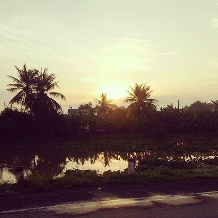 Sunrise Trip Baclieu Sunshine