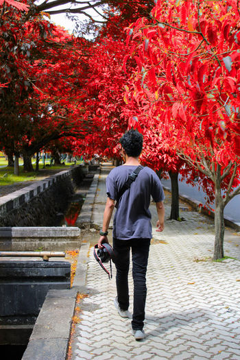 Rear view of man walking on footpath at park