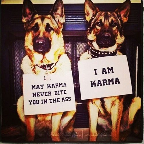 Karma Is What You Did & Do !! You Asss !! ;) :P LOL