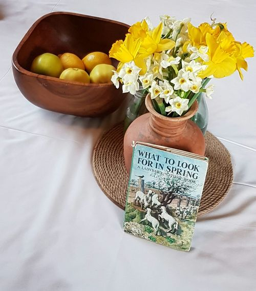 Daffodils Spring Flowers Fruit Art Perspective Spring Time Ladybirdbooks Tablecloth Healthy Eating Freshness Beauty In Nature Countrykitchen No People Indoors  Vase Of Daffodils Pottery Pottery Art Jug Nature Beauty Tranquil Scene Flower Head Fragility Lemons Apples Fruit Photography