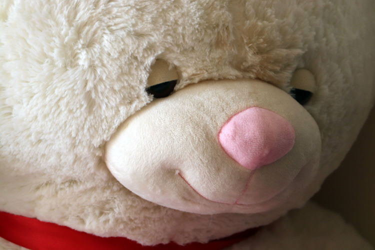 High angle view of stuffed toy