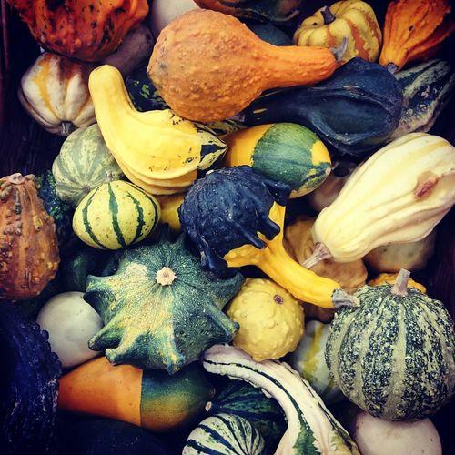 Nice colors Autumn Autumn Colors Autumn Collection Autumnfood Vegetables Foodmarket