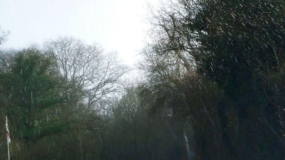 Rain Raining Again Countryside