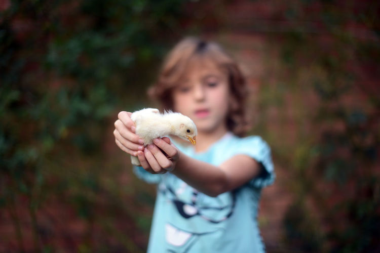 Girl holding bird while standing outdoors
