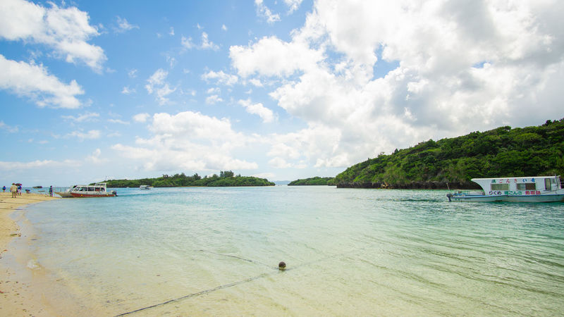 Tree Water Nautical Vessel Sea Beach Swimming Yacht Sand Summer Tourist Resort
