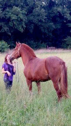 BIGLOVE Youwillstayinmyheart Sommer2014 Missyou Baby Enya Horse Favorite *-*