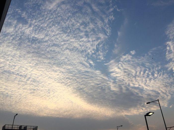 本当に綺麗だった。 Sky And Clouds Clouds Sky Clouds And Sky