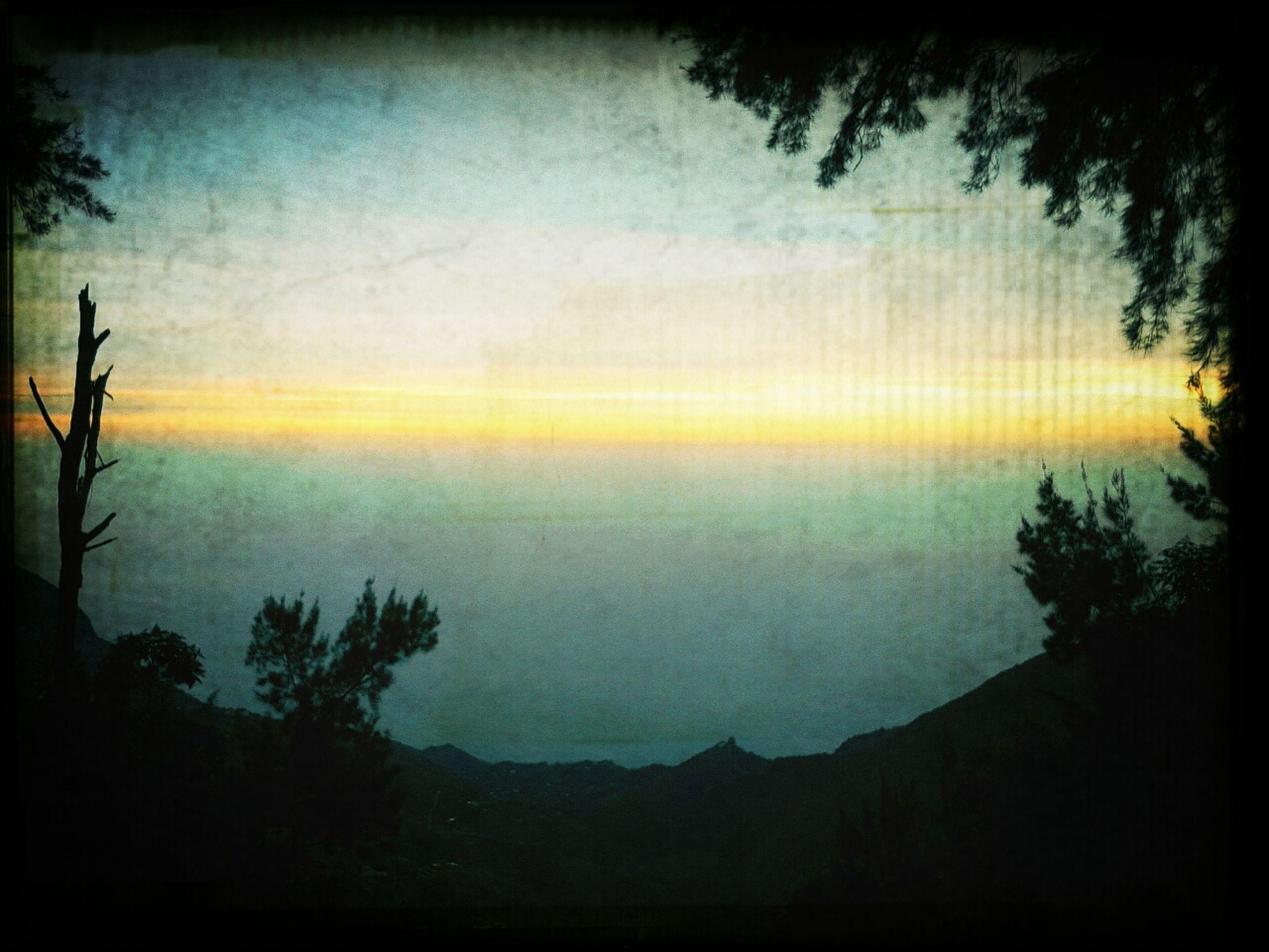 sunset, silhouette, tranquil scene, scenics, tranquility, transfer print, beauty in nature, sky, auto post production filter, tree, nature, idyllic, landscape, dusk, orange color, outdoors, cloud - sky, non urban scene, branch, sun