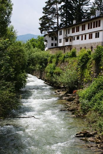 Water_collection лес и природа Nature_perfection Stream - Flowing Water Flow  Mountain River Mountain Stream Mountain Water Water Nature River View Village Riverside Village Riverside Town Riverside River Bank