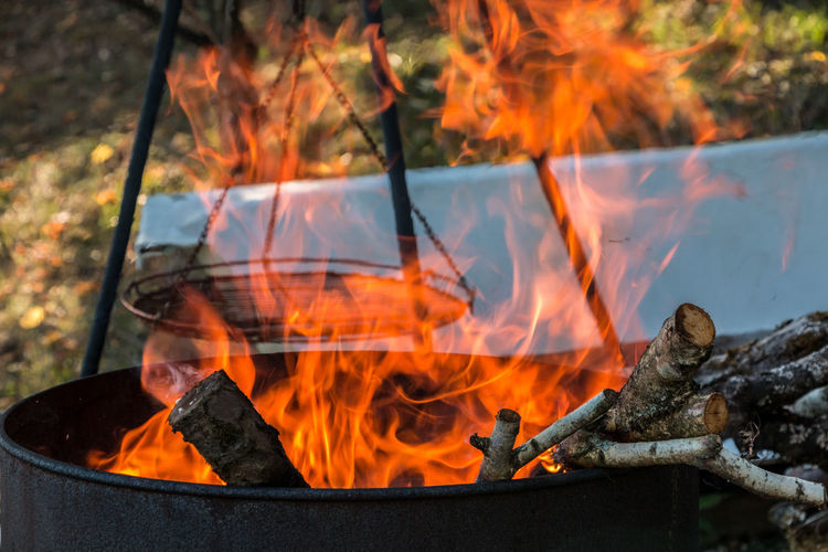 Burning barrel in the middle of the garden Burning Fire Fire - Natural Phenomenon Heat - Temperature Flame Nature Glowing Log Bonfire Wood - Material Orange Color Wood Firewood Outdoors Environment Close-up No People Fireplace Focus On Foreground Fire Pit Campfire