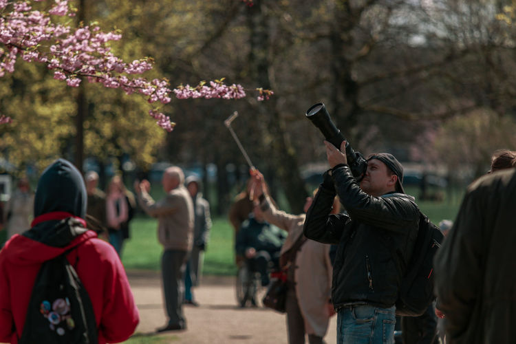 Group of people on cherry blossom against trees