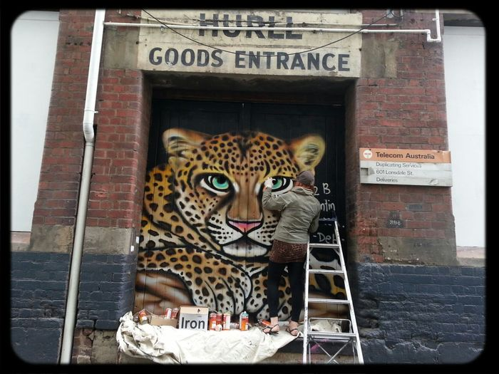 Leopard graffiti Streetart in melbourne Laneways by artist Deb visiting home from San Francisco