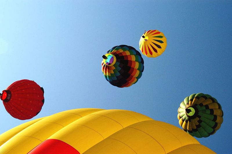 Lovely Sky Clear Sky Blue Reds Yellow Hot Air Balloon Outdoors Colorful Independence Day Eye4photography  Celebrate Flying Ballons Summer Beautiful Colors Utah Provo Utah County Bright Colors Contrast Beautiful Day Flying High Balloons Summer Fun Excitment
