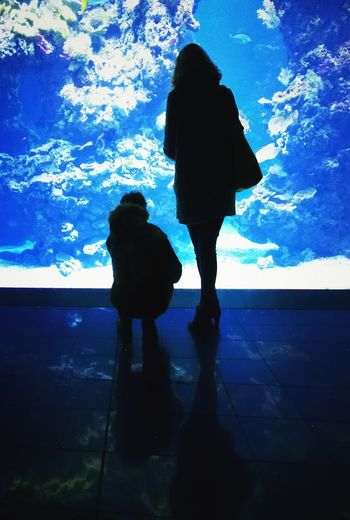 Mother and child Fish Aquarium Monaco Contrast Reflections Corals Underwater Full Length Standing The Traveler - 2018 EyeEm Awards HUAWEI Photo Award: After Dark