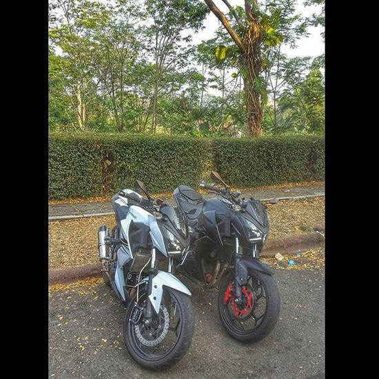 Motorcycle Kawasaki Kawasakiz250 Z250 NakedBike Streetfighter Nakedbikenation Val  2015  Samsung GalaxyS5