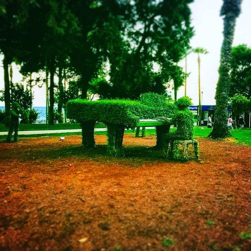 Piano Pianist Vsco #vscocam #vscolab #vsco_hub #vscobest #vscoedit #vscogood #vscogram #vscogrid #vscolife #vscolike #vscomood #vscodaily #vscomoment #vsconature #vscoturkey #vscofeuture #instagood #instalike #instamood #instaphoto #instacollage #photooftheday #bestofv Instagood
