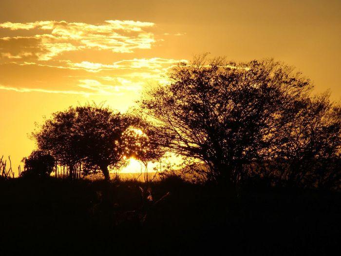 Por do sol ☀️ mais lindo é aqui